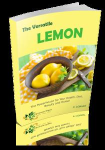 lemon cover 3D