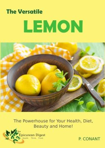 ebook cover lemon